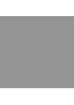 UNE-EN ISO 17100 Logo